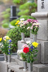 墓石と供花の写真素材 [FYI02861513]