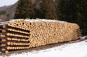 積み上げられた材木の断面と雪の写真素材 [FYI02861533]