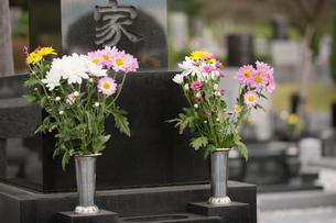 墓石と供花の写真素材 [FYI02861770]
