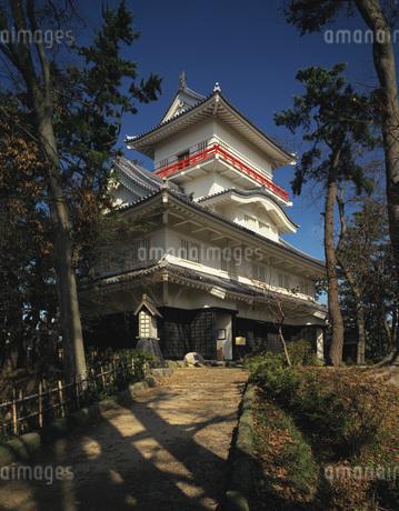 久保田城跡の写真素材 [FYI02862897]
