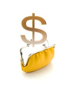 財布と$マークの写真素材 [FYI02865535]