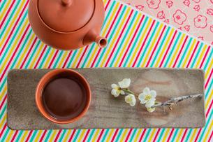 日本茶と梅の花の写真素材 [FYI02866159]