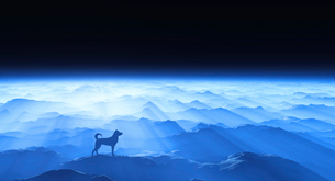 夜明けと犬のシルエットのイラスト素材 [FYI02866368]