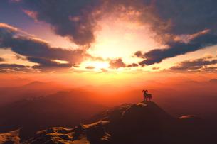 日の出と羊のイラスト素材 [FYI02866446]