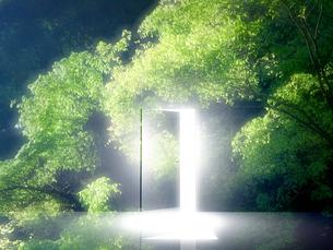 光が射し込むドアの写真素材 [FYI02866464]