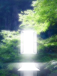 光が射し込む窓の写真素材 [FYI02866514]