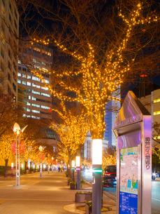 夕暮れの神戸ハーバーランド (X'Mas電飾)の写真素材 [FYI02866897]