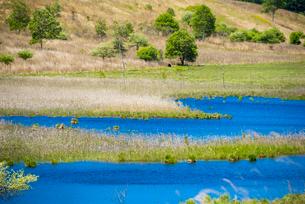 霧ヶ峰高原 早春の踊場湿原アシクラの池の写真素材 [FYI02867084]