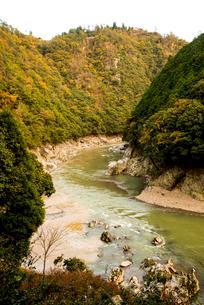 秋の桂川渓流の写真素材 [FYI02867111]