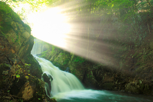 武石川のお仙ヶ淵の滝から舞い上がる水煙と木もれ日の光芒の写真素材 [FYI02867459]