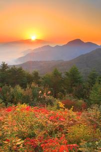 浅間山から昇る朝日と冠着山などの山並みと紅葉の樹林の写真素材 [FYI02867714]