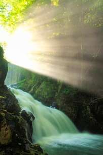 武石川のお仙ヶ淵の滝から舞い上がる水煙と木もれ日の光芒の写真素材 [FYI02867998]