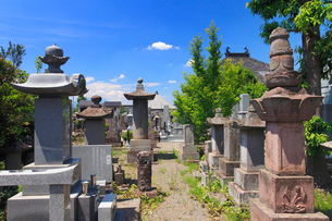 矢澤家墓所の写真素材 [FYI02868022]