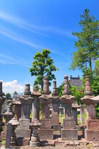 鎌原家墓所の鎌原桐山の墓の写真素材 [FYI02868035]
