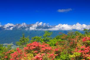 空木岳の山並みとツツジの写真素材 [FYI02868218]
