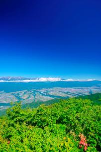 木曽駒ヶ岳など中央アルプスの山並みとツツジと伊那谷の写真素材 [FYI02868263]