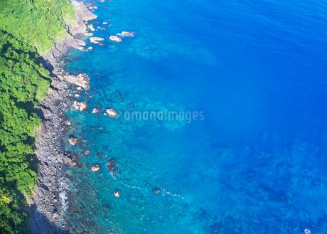 浦ノ内須ノ浦付近から望む東方向の海岸線の写真素材 [FYI02869018]