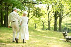公園を散歩するシニア夫婦後姿の写真素材 [FYI02869117]