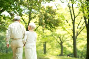 公園を散歩するシニア夫婦後姿の写真素材 [FYI02869355]