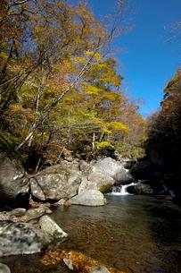 川俣川渓谷の写真素材 [FYI02870430]