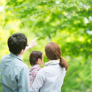 新緑の中で赤ちゃんを抱く家族の後姿の写真素材 [FYI02875205]
