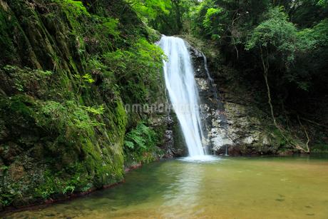 虹の滝(雄滝)の写真素材 [FYI02876044]