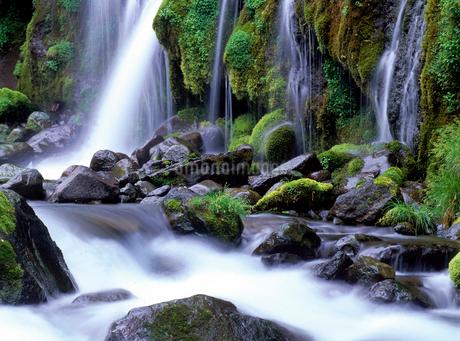 吐竜の滝の写真素材 [FYI02878972]