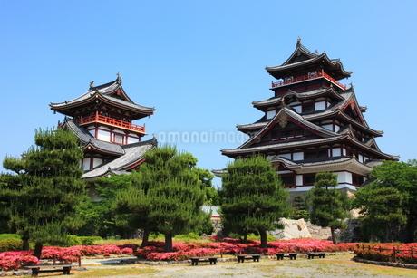 新緑の京都 伏見城天守閣の写真素材 [FYI02879250]