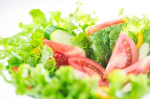 野菜サラダの写真素材 [FYI02879712]