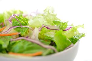 野菜サラダの写真素材 [FYI02880073]