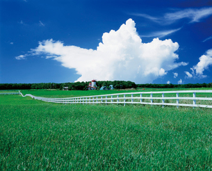 牧場の写真素材 [FYI02881124]