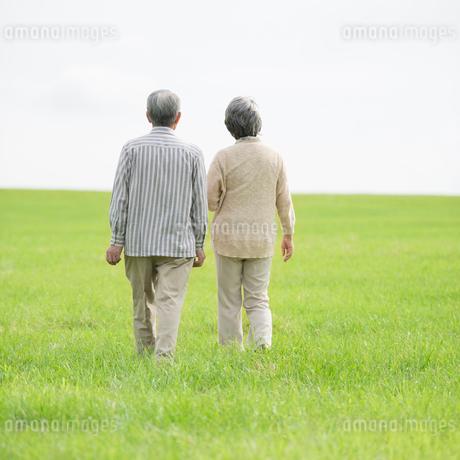 草原を歩くシニア夫婦の後姿の写真素材 [FYI02887352]