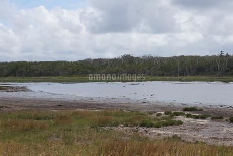 野付半島の風景 ナナワラの写真素材 [FYI02893571]