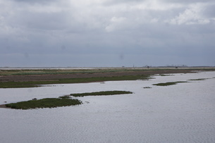 野付半島の風景 トトワラの写真素材 [FYI02893578]