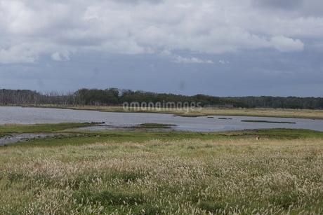野付半島の風景 ナナワラの写真素材 [FYI02893588]
