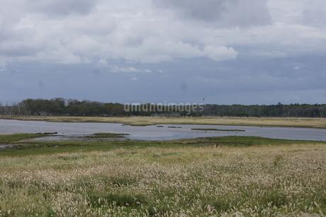 野付半島の風景 ナナワラの写真素材 [FYI02893592]