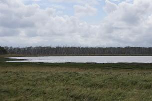 野付半島の風景 ナナワラの写真素材 [FYI02893597]