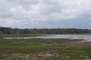 野付半島の風景 ナナワラの写真素材 [FYI02893601]