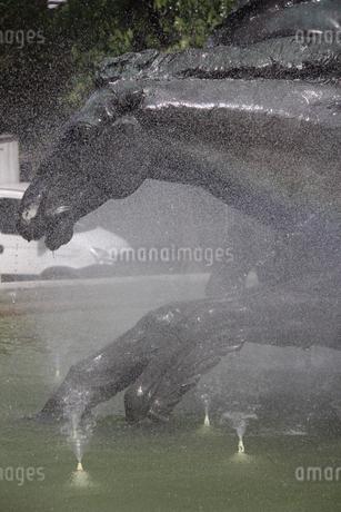 噴水と馬の銅像の写真素材 [FYI02893851]