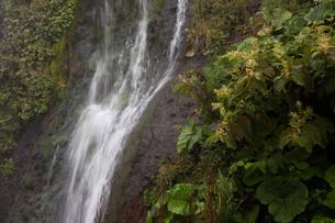 岩肌を流れる滝の写真素材 [FYI02896046]