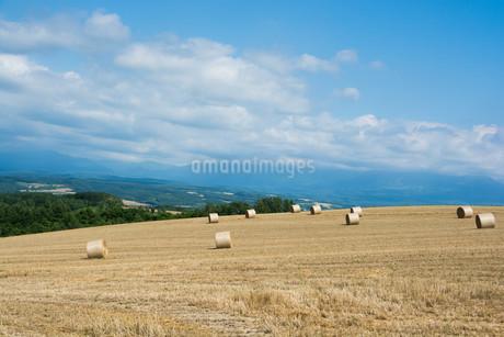 収穫が終わった麦畑とムギロールの写真素材 [FYI02896048]
