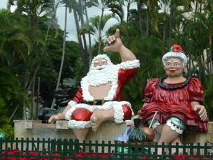 Hawaiian X'masの写真素材 [FYI02906435]