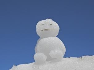 雪だるまの写真素材 [FYI02908526]