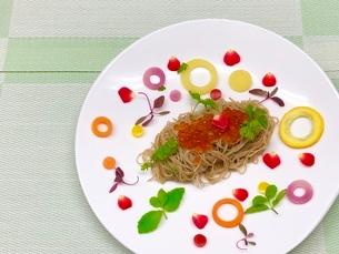 Sarad pastas のイラスト素材 [FYI02908576]