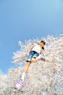 青空でジャンプする女の子(桜、ランドセル)の写真素材 [FYI02912937]