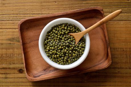 緑豆の写真素材 [FYI02914933]