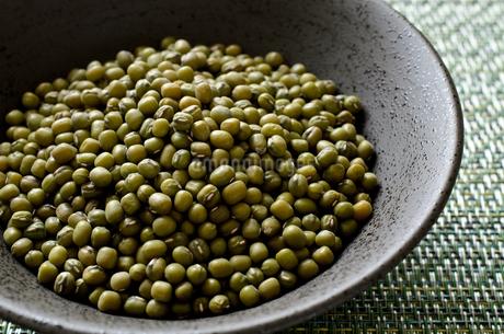 緑豆の写真素材 [FYI02914937]