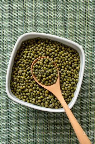 緑豆の写真素材 [FYI02914939]