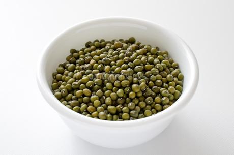 緑豆の写真素材 [FYI02914940]