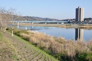 かながわの橋100選 高田橋の写真素材 [FYI02915129]